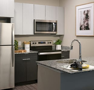 All-Inclusive NC State Apartments - Image 02